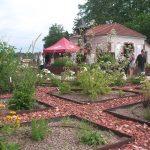 Jardins de la crypte - 10 - MoinsLesMurs
